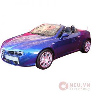 TOEIC 600 - 40 - Car Rentals