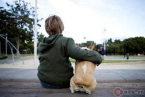 A DOG THAT CAN TALK - MỘT CON CHÓ BIẾT NÓI