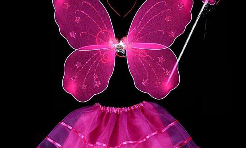Butterfly Princess story