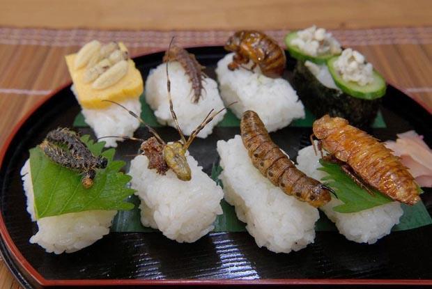 món sushi côn trùng kinh dị hn
